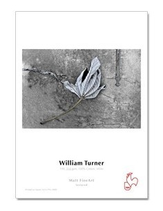 William turner 190Gr