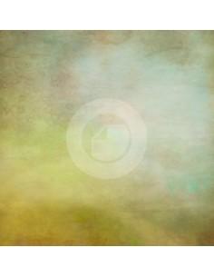 Canvas Hintergrund ref. 7099OT