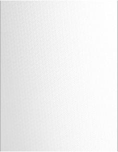 Fond vinyle pure white