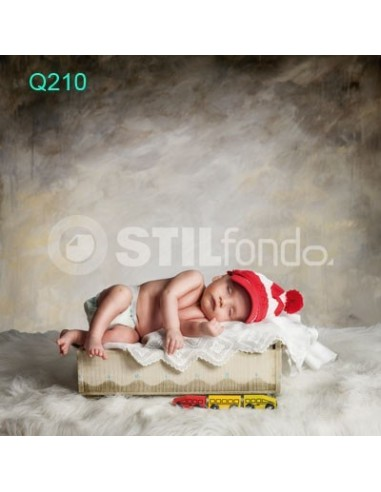 Fondo fotografico Q210