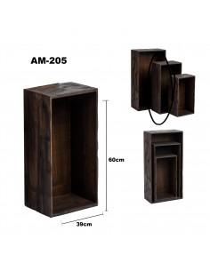 AM205