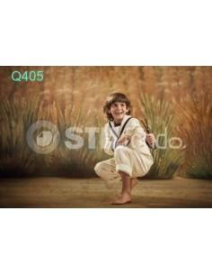 Fondo fotografico Q405